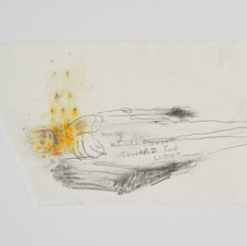 'Moth Keeps Moving Toward[s] The Light', 2020, graphite and coloured pencil on paper. Photograph by Simon Mills.
