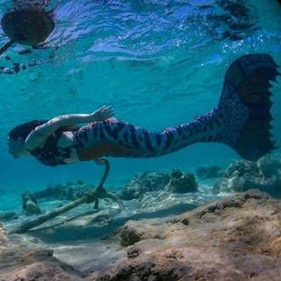 Mermaid Shylah in the Red Sea
