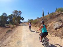 Mountain Bike 5.jpg