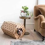 DHUMA Hexagon - Lifestyle.jpg