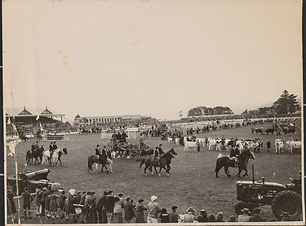 1875 Elwick Racecourse Grounds.jpg
