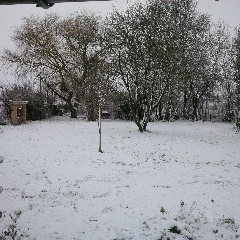 écologis du Thimerais sous la neige