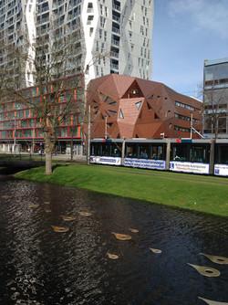 Rotterdam.riverwalk