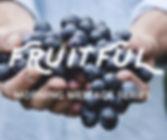 fruitful website.jpg