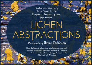 Lichen Abstractions poster