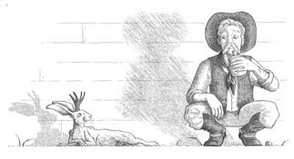 The Origin of the Jackalope