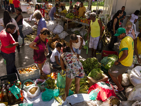 Insegurança alimentar e o injusto acesso à terra
