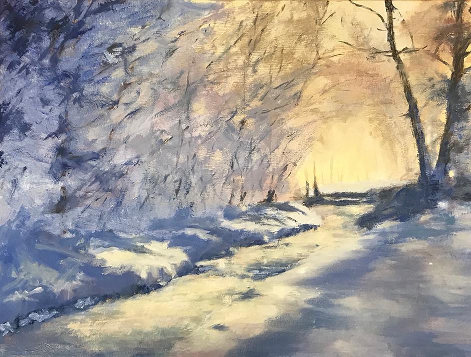 Sneeuwlicht