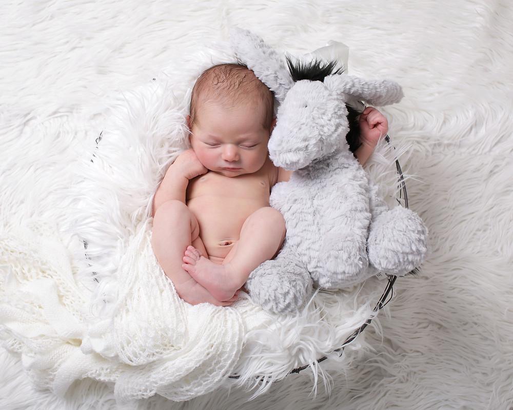 Baby Harper, Newborn Shoot