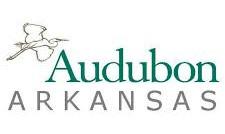 Audubon Angels/Little Scholars