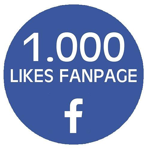 1,000 Facebook Fan Page Likes
