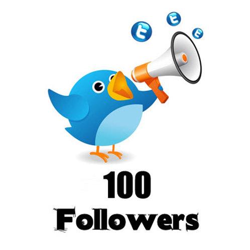 Provide 100 Twitter Followers