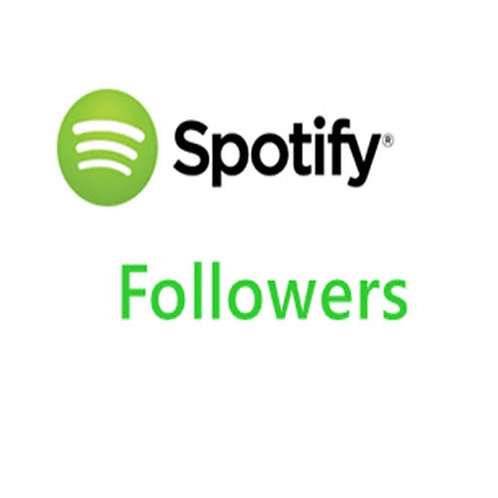 We will provide 6,000 Spotify followers