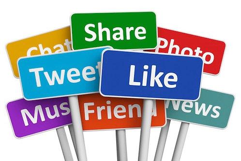 500 High Quality PR9-PR10 Social Signals