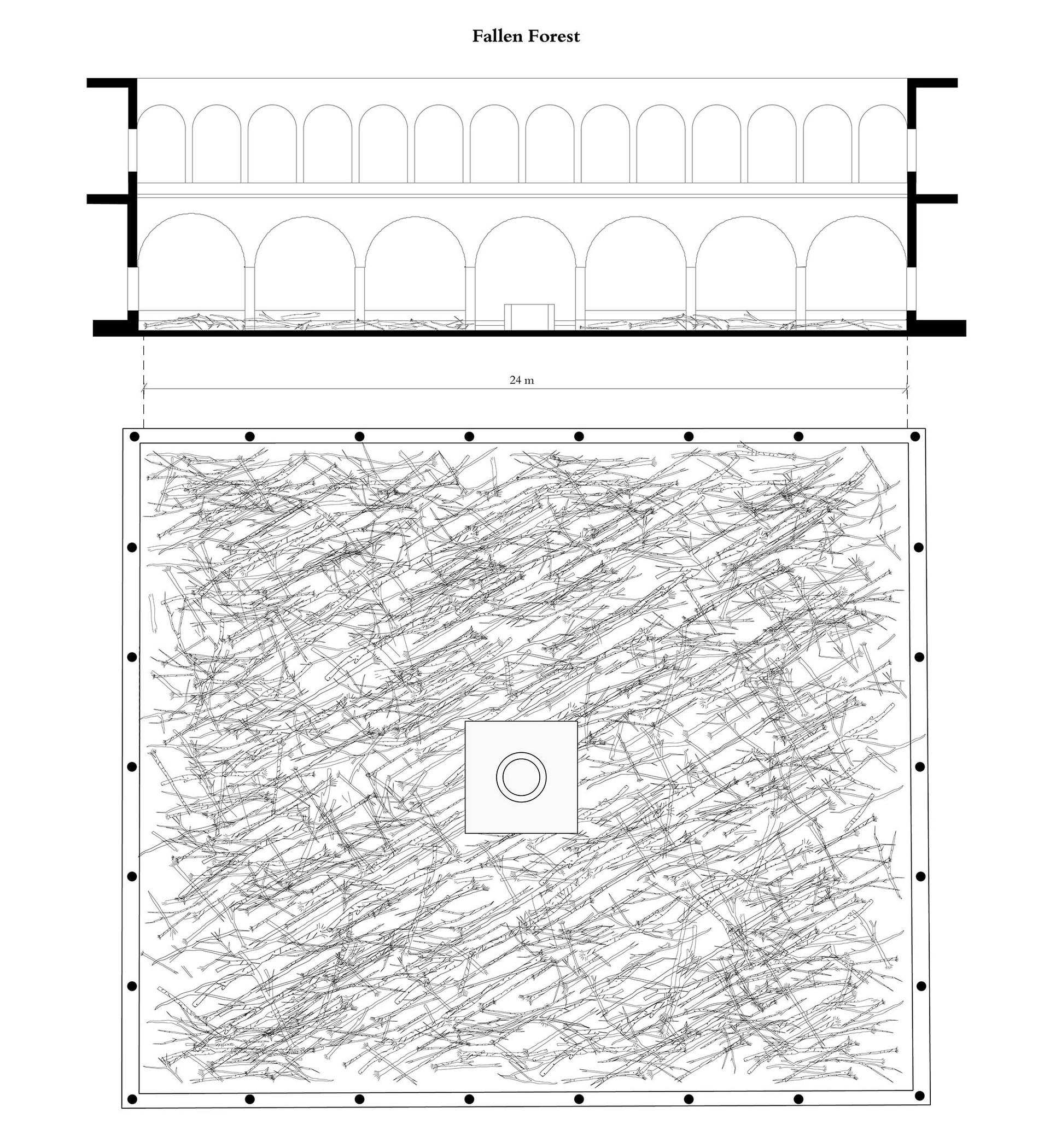 Forest-drawings_Final-02.jpg