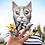 Thumbnail: Finger Cats - Finger Puppets (set of 4)