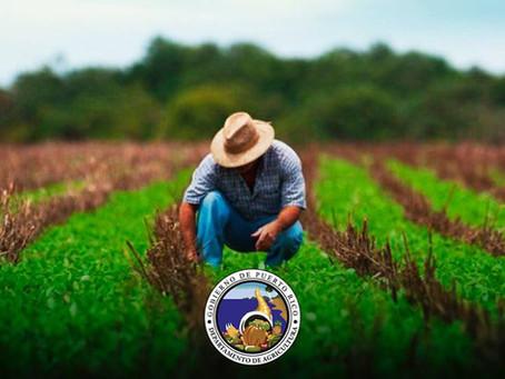 Incentivos para el agricultor