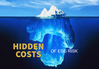 The hidden costs of ESG risk, 3 business strategies to minimise it
