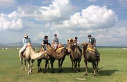 Mongol Els Camel Riding