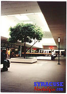 shoppingtown1990-10.jpg