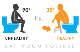 Squat on the pot?  Your pelvic floor will thank you.