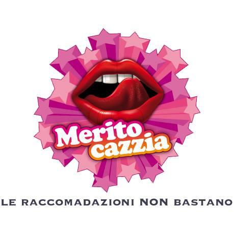 MERITOCAZZIA - le raccomandazioni NON bastano