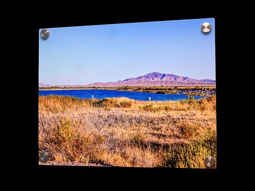 Ash Meadow Desert Oasis