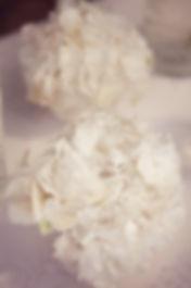 гортензии, красивые цветы, свадебный цветы Тюмень. цветок гортензии на выездной регистрации, цветы и декор на свадьбе от свадебного агентства Нового Уровня.