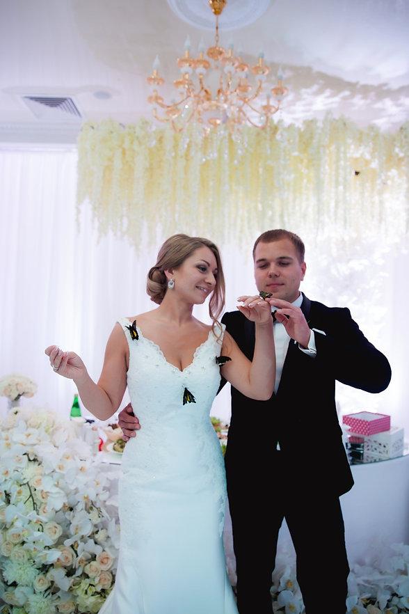 шоу программа на свадьбу, свадьба в Тюмени