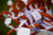 зонты для гостей на свадьбу, свадебное агентство Wedding Production WPwedding,свадебный организатор Ксения Стан и её команда