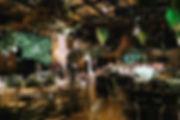 IMG-0177_edited.jpg