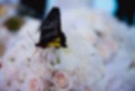 свадебный букет на свадьбе, свадебный организатор Ксения Стан