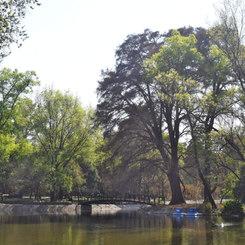 Articular todas las secciones del Bosque de Chapultepec