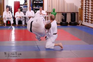 Judo Test 2017