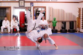 2017 Judo Test