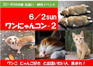 6.2 sun ワンにゃんコン-2 好評開催!