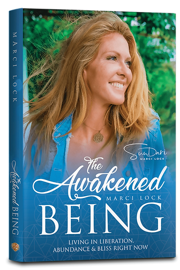 The-Awakened-Being-Book-Cover-V1a.png