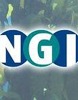NGI_symbol for Facebook 180x180.jpg