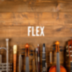 FLEX SoundCloud.png