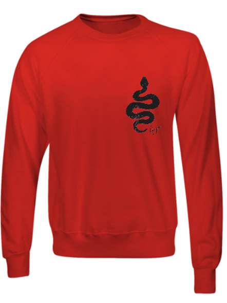 Aaja standard Red Jumper (double sided print)