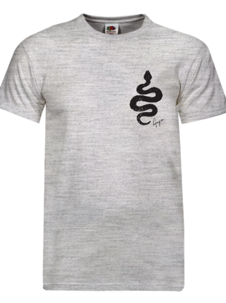 Aaja standard Ash Grey T-Shirt