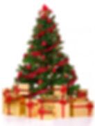real-christmas-tree.jpg