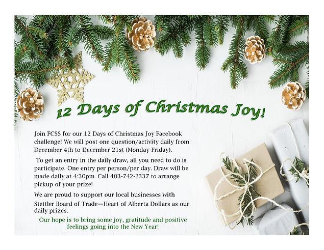 12 Days of Christmas Joy poster.jpg