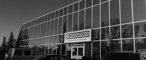 shandro project