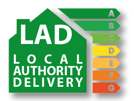 WHAT IS THE LOCAL AUTHORITY DELIVERY SCHEME?