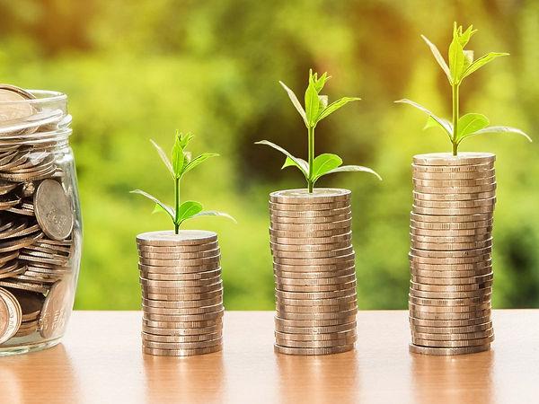 0_money-investment-green-shoots.jpg