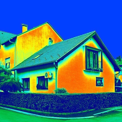Home Thermo Heat Imaging.jpg