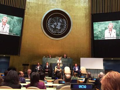 Gerente-geral do CREN participa de Cúpula de Inovação da ONU