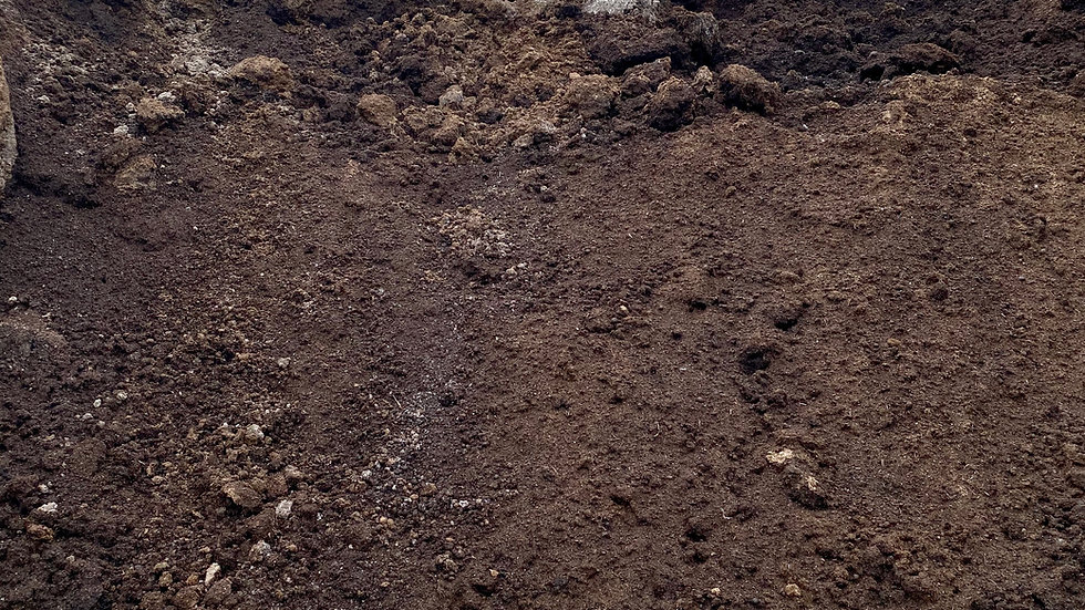 Dairy Compost