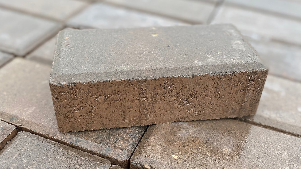 Holland Paver 4x8 Walnut